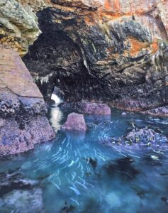 Romantic getaways in Northern California would not be complete without a visit to the sea caves of Mendocino!