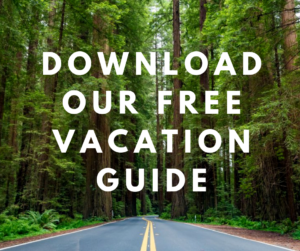 view of a road leading into the Redwood forest and the tall trees with overlaying text saying download our free vacation guide