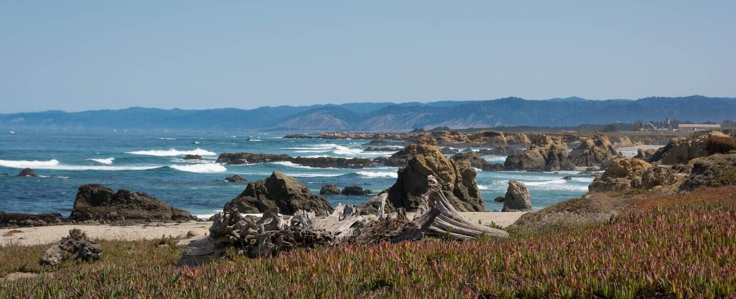 Noyo Headlands Park Ft Bragg
