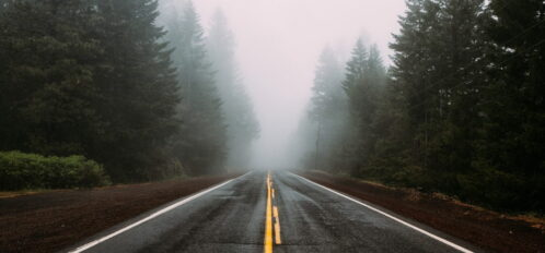 lonely road leading in to the fog surrounded by spruce trees | Sacramento to Mendocino