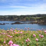 Sea Rock Bed & Breakfast Inn on the Mendocino coast