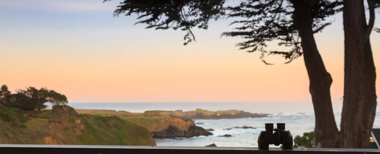 Binocular overlooking pacific ocean | California coast road trip