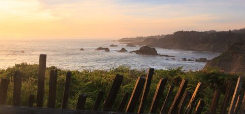 View of the Mendocino coast | Jug Handle State Reserve at sunset