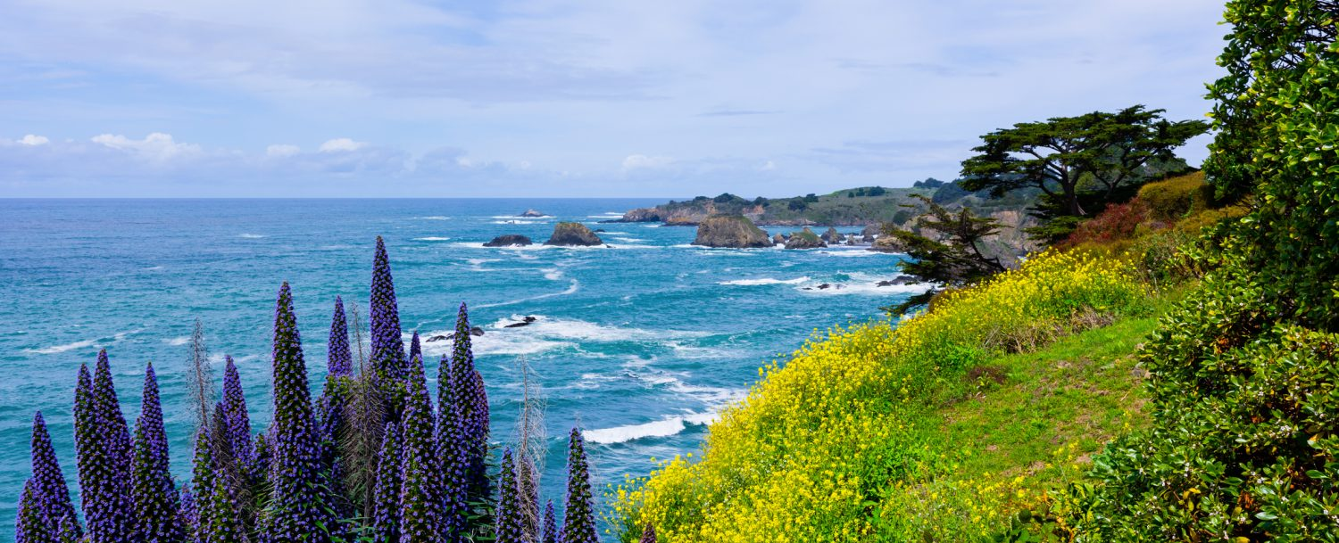 Northern California Coast near Mendocino