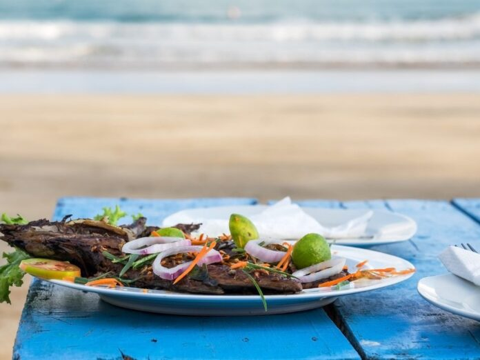 Plate of grilled fish in front of the ocean during the Point arena Seafood and Harbor Festival